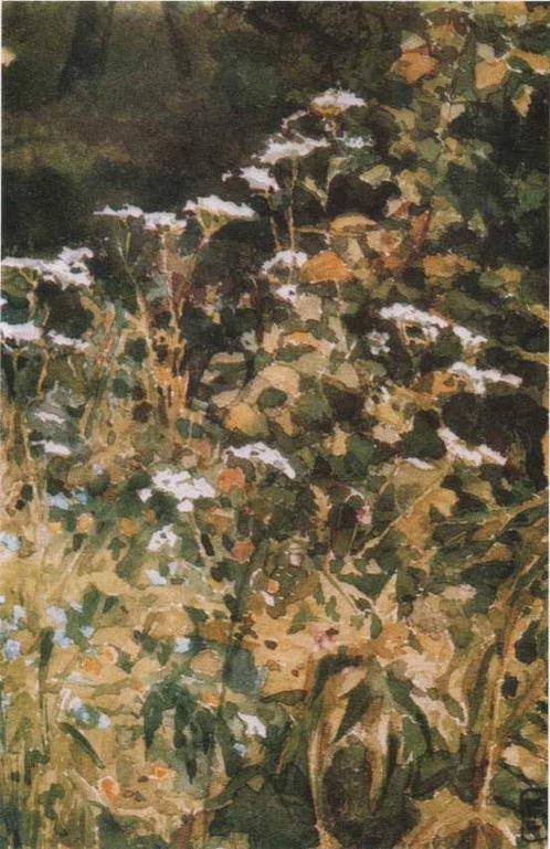 """картина Е. Поленовой """"Белые цветы тысячелистника."""" 1883"""